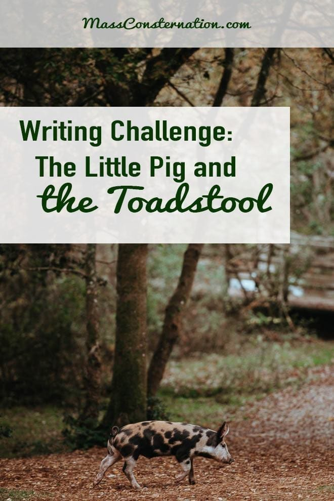 The Little Pig and the Toadstool