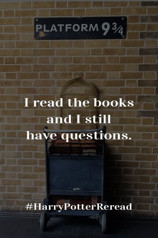 Harry Potter and the Chamber of Secrets still leaves things unanswered. Not things like: Snape good or evil, but like can Harry be more stupid?  #Harry Potter #Chamber #Chamberofsecrets #WizardingWorld #BookBlogger #MassConsternation